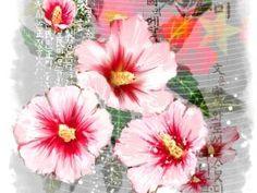 무궁화꽃 그림 - Google 검색