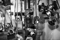 27022012-ScanFilm-Canon-EOS-1V-Ilford-HP5-400-Expired-2002-Caffenol-CL-009