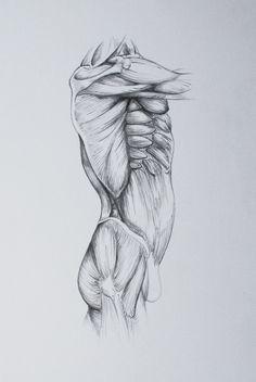 Human body. Organic forms. Art.