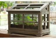 I wonder if herbs would do well over winter in this sort of cold frame like terrarium? Perhaps I should try it!