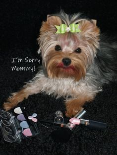 You're lipstick ...no I haven't seen it mommy....<>