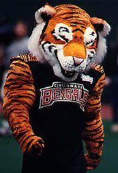 Cincinnati Bengals Mascot