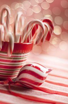 29 Trendy Ideas For White Christmas Wallpaper Candy Canes Christmas Scenes, Noel Christmas, Christmas Candy, Christmas Colors, Christmas Treats, Winter Christmas, All Things Christmas, Xmas, Christmas Wishes