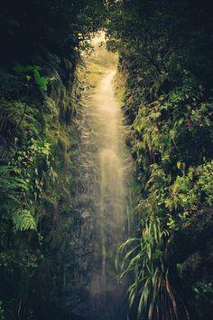 New Zealand #travel #wanderlust #travelling #world #love #earth #life
