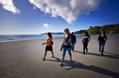 Waiheke Island Tours - Waiheke Explorer Tour, Vineyard tours with Fullers
