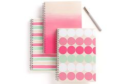 Craft Painting - Martha Stewart Color Notebooks