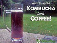 How to Make Kombucha from Coffee