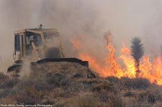 cal fire | ca_cal_fire_11_8_2012_(2)-1.jpg