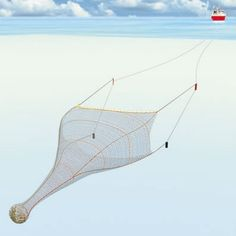 Pelagic Trawling
