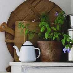 A beautifully decorated corner featuring our white with blue rim teapot Falcon Enamelware, Watering Can, Teapot, Planter Pots, Corner, Canning, Blue, Image, Tea Pot