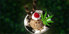 Sweet Mary Jane: 10 Delicious Cannabis Desserts