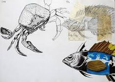 1000 Images About Observational Drawings On Pinterest