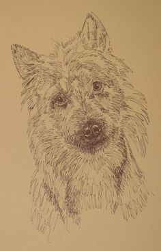 Dog art drawn entirely from the words Australian Terrier. See all the 110 breeds at: drawDOGS.com