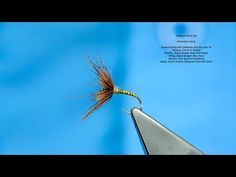 Tying a Clyde Style Wet Fly the Blae & Hare's Lug with Davie McPhail Fly Tying Vises, Fly Dressing, Fly Fishing Rods, Fly Tying Patterns, Wings, Tie, Mayfly, Youtube, Traditional