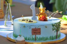 Winnie the Pooh cake, 1st birthday cake (1)         HOW PRECIOUS