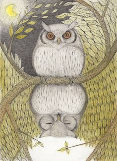 表裏 owl by Matsuyama Madoka Hermetic Axiom: As Above, so below