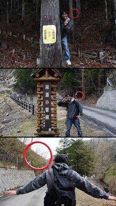 This is why you should fear the forest funny pictures Crazy Funny Memes, Really Funny Memes, Haha Funny, Funniest Memes, Funny Gifs, Hilarious, Creepy Images, Creepy Art, Scary