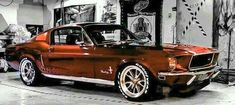 Copper Colored Mustang