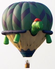 hot air balloon, balloon festival in Dansville, New York Air Balloon Festival, Balloon Pictures, Helium Balloons, Hot Air Balloons, Balloon Balloon, Air Ballon, Air Balloon Rides, Balloon Shapes, Turtle Love