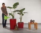 Fabricant Français de pot de fleurs Rouge Nordique - design classique : Accessoires de maison par inisia-fr