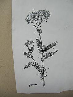 herbal tattoo idea