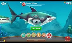 The fierce and deadly hunter, Great white shark from hungry shark world.