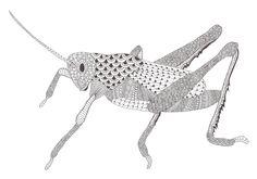 Zentangle made by Mariska den Boer 150