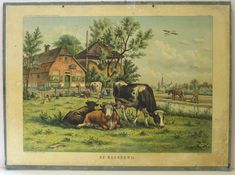 De Boerderij/ Vintage Pictures, Vintage Images, Tame Animals, Picture Composition, Cow Art, Vintage School, Painting People, Old Farm, Vintage Postcards