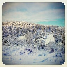 Zima 2014