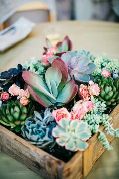 Beautiful succulent arrangement in rustic wood box.  #succulent