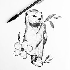 #Otter #Tattoo #Sketch #Drawing Design, Ink, Illustration, Black and white - Photo by @eva.svartur - Follow #extremegentleman for more pics like this!