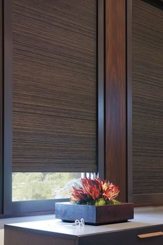 Room Darkening and Blackout Window Treatments