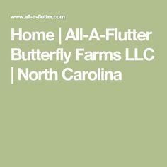 Home   All-A-Flutter Butterfly Farms LLC   North Carolina