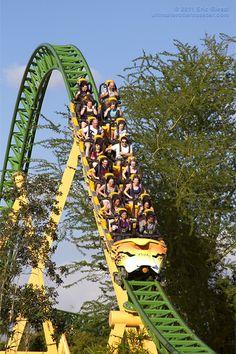 Roller Coaster Fans Love Airtime | Cheetah Hunt, Busch Gardens Tampa