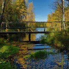 Kudy z nudy - CHKO Slavkovský les – ostrov zeleně v lázeňském trojúhelníku Spa, Bohemia