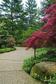 Japanese Garden Path, photo by Gerald Marella