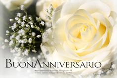 Greetings postcards and free wallpaper, WhatsApp and Smartphone Happy Birthday, Birthday Wishes, Rose Images, Happy B Day, White Roses, Wedding Anniversary, Greeting Cards, Table Decorations, Flowers