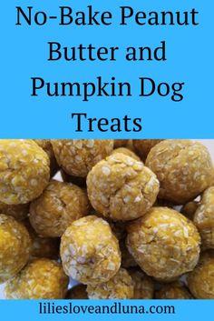 Easy, no-bake pumpkin and peanut butter dog treats. dog treats peanut butter Pumpkin and Peanut Butter Dog Treats No Bake Dog Treats, Peanut Butter Dog Treats, Puppy Treats, Diy Dog Treats, Healthy Dog Treats, Soft Dog Treats, Peanut Butter Dog Biscuits, Sweet Potato Dog Treats, Frozen Dog Treats