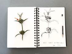 Botanical sketches www.clothandprint.com