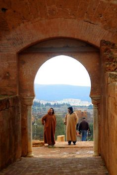 Mansoura .Tlemcen.-Algérie -