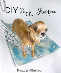 DIY Puppy Shampoo