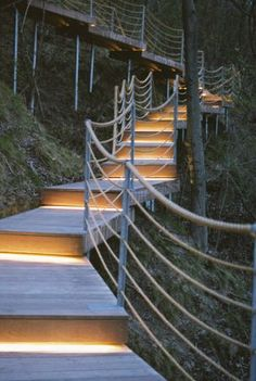 landscape stair, rope rail, tread light