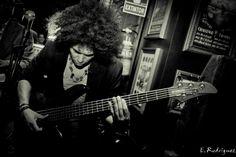 Live music. Bass player