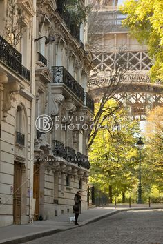 A woman walking her dog in Rue de L'Universite with the Eiffel tower in the background. This image really gives a sense of scale.