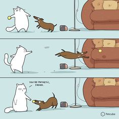 """Remember Lingvistov - the creative doodle shop (founded by Asia and Landysh) that sells awesome illustrations, including Reasons Why I Love Her"""" , Funny Animal Comics, Cat Comics, Funny Animals, Cute Cats, Funny Cats, Kitten Beds, Pet Camera, Funny Doodles, Living With Cats"""
