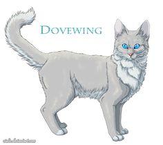 Dovewing by Vialir.deviantart.com on @DeviantArt