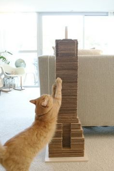 Recycle some of your old cardboard to create your own cat skyscraper.