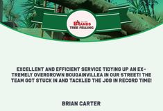 Thank you, Brian Carter, for your wonderful comment on the work done by the Brands Tree Felling team.  We appreciate your kind words!  www.brandstreefelling.co.za  #compliments #treefelling #treecare #brandstreefelling