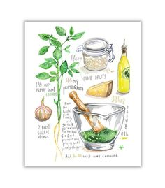 Basil Pesto recipe illustration print Watercolor herb