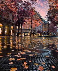 Zurich, Switzerland  ✨ @myswitzerland #myswitzerland  . ✨ @switzerland.vacations #switzerland_vacations  #golden_heart #inlovewithswitzerland #switzerlandwonderland #zurich #switzerland #Europe #europe_vacations